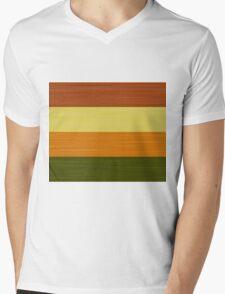 Brush Stroke Stripes: Fall Foliage Mens V-Neck T-Shirt