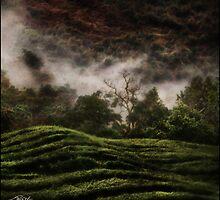 Uganda: Tea Quilt by Ted Byrne