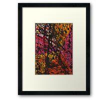 Corner Splatter # 12 Framed Print