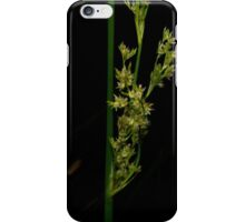 Rush Flower iPhone Case/Skin