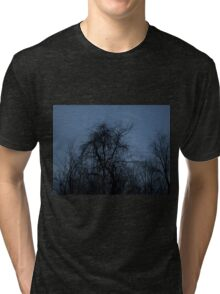 HDR Composite - Backlit Trees and Twilight Tri-blend T-Shirt