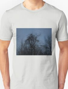 HDR Composite - Backlit Trees and Twilight T-Shirt