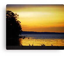 Serene Canadian Geese On The James Canvas Print