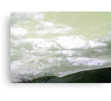 Oz Canvas Print