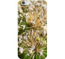 Wild Atoms iPhone Case/Skin