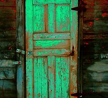 Doors of Perception by Scott Ludwig