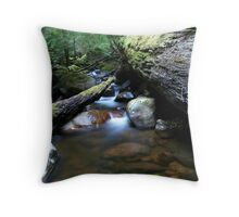 Creek & Logs Throw Pillow