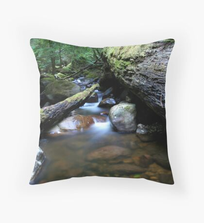 Creek & Logs Throw Pillow