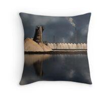 Industrial Salt Throw Pillow