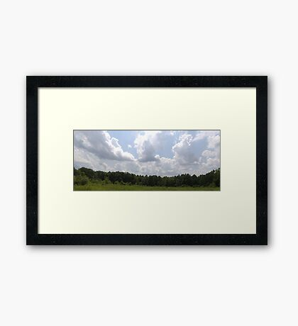 HDR Composite - Brambles in Nature Preserve Framed Print