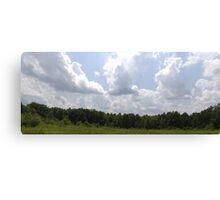 HDR Composite - Brambles in Nature Preserve Canvas Print
