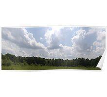 HDR Composite - Brambles in Nature Preserve Poster