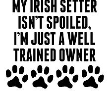 Well Trained Irish Setter Owner by kwg2200