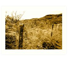 Memory of a fence Art Print
