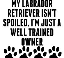 Well Trained Labrador Retriever Owner by kwg2200