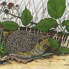 Hedgehog by gooding