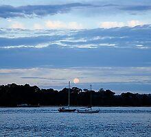 Two ships that pass in the night by Rosina  Lamberti