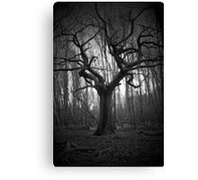 haunted tree Canvas Print