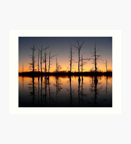 Bayou Sunset 2 Art Print