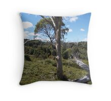 on King Billy track at Cradle Mt today - so peaceful Throw Pillow