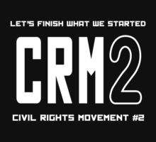 CRM2 -- Civil Rights Movement #2 by Samuel Sheats