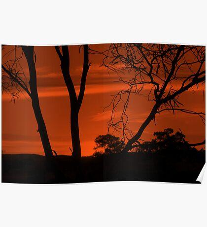 Mono Sunset Poster