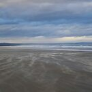 Windswept Beach, St Andrews by Rebecca Silverman