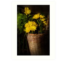 Flowers in a basket Art Print