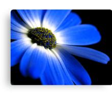 Blue! Canvas Print