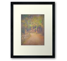 Hikers Walking Along Tranquil Kozan-ji Forest Kyoto Japan Framed Print