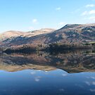Reflection in the lake by Mike Paget