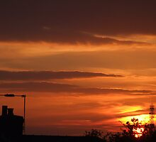 sunrise by Nisha