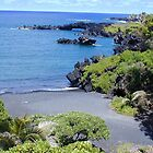 Black Sand Beach by Cathy Jones