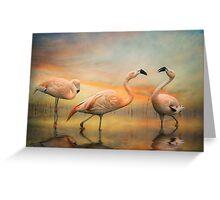 Flamingo Dusk Greeting Card