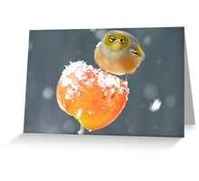 This Toffee Apple Is ALL MINE!!! - Silver-eye - NZ Greeting Card