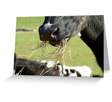 Is This All Supposed To Taste The Same?.. - Dairy Cow - NZ Greeting Card