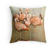 Cleaning up their act. Throw Pillow