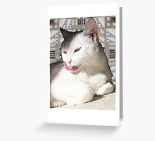 Aztec kitty Greeting Card