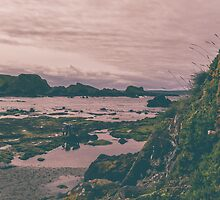Rock pools at Ballintoy by Alan Campbell