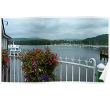 Bowness Flowers Poster
