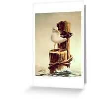 LONE SEAGULL on PILING by SHARON SHARPE Greeting Card
