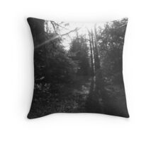 """Guiding light"" Throw Pillow"