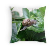 "Snail ""I hate snails"" they eat my flowers""! Throw Pillow"