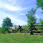 McConnel Springs - Lexington Kentucky by G. David Chafin