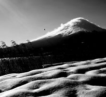mt fuji - you are wise to climb mt fuji once and a fool to climb it twice by Kane Horwill