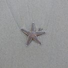Lonely Starfish by Jenni C
