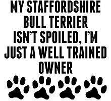 Well Trained Staffordshire Bull Terrier Owner by kwg2200