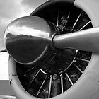 Radial Engine BnW by Michael Wolf