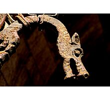 slovenian dragon Photographic Print