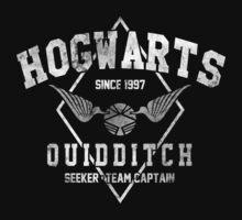 Hogwarts Quidditch V2 by Arinesart